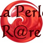 Boutique de jeux « La perle r@re »